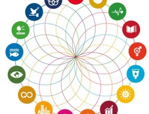 Achieving the UN's SDGs implies bold leadership